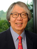 tommykoh